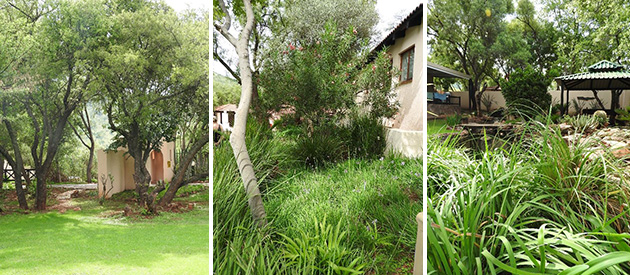 ile du lac, self catering, accommodation, hartbeespoort, dam, crocodile river, tranquil, scenic views, mountains